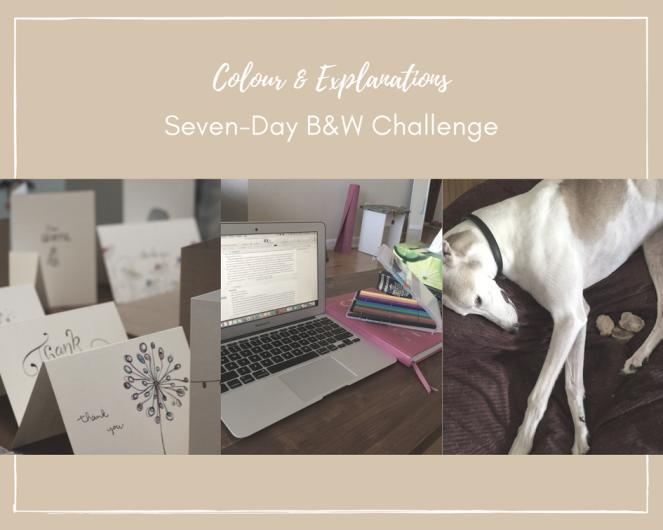 Seven-Day B&W Challenge-2